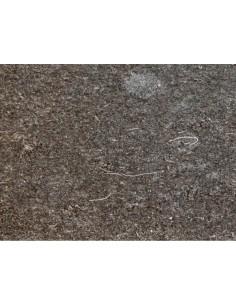 PLINTHE GRIS CATALAN SATINO